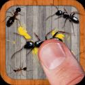 دانلودجدیدترین نسخه بازی Ant Smasher 9.54  بازی له کردن مورچه ها اندروید+مود